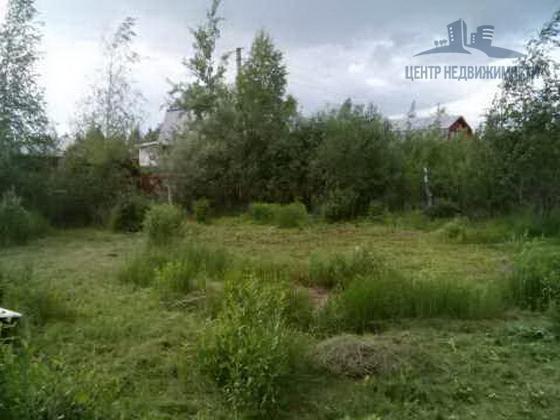 Продается дачный участок Павлово-Посадский р-н, д. Евсеево, СНТ «Агро», 6 соток
