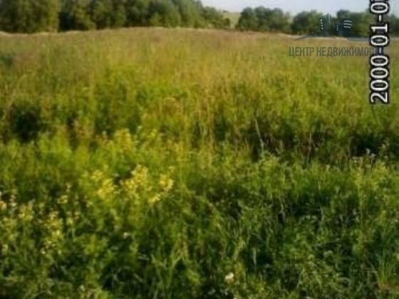 Продается земельный участок Павлово-Посадский р-н, д. Грибанино, Центральная ул., 10 соток