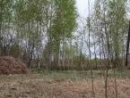 Продается дачный участок Павлово-Посадский р-н, д. Кузнецы, СНТ «Колос», 6 соток