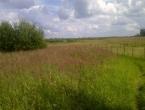 Продается земельный участок Павлово-Посадский р-н, д. Перхурово, Центральная ул., 18 соток