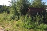 Продается дачный участок Павлово-Посадский р-н, д. Васютино, СНТ «Зарянка», 6 соток