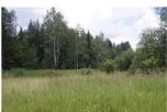 Продается дачный участок Павлово-Посадский р-н, д. Сумино, СНТ «Сумино-2», 10 соток