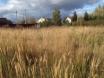 Продается земельный участок Павлово-Посадский р-н, д. Алферово, Центральная ул., 30 соток