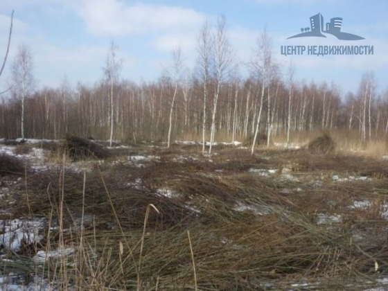 Продается дачный участок г. Электрогорск, г. Электрогорск, СНТ «Росинка», 24 соток