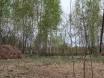 Продается дачный участок г.о. Павловский Посад, д. Кузнецы, СНТ «Колос», 6 соток